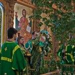 Пятидесятница, Божественная Литургия