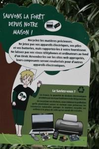 Le parc zoologique de Thoiry en famille : une sortie nature pédagogique