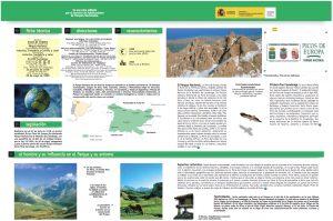 Desplegable Parque Picos de Europa inicio