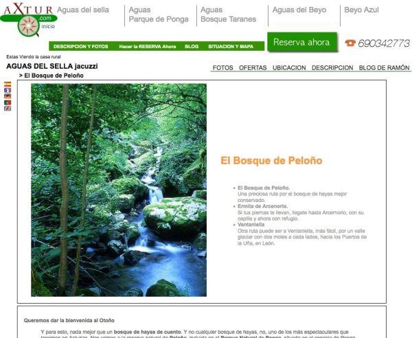 Bosque de Peloño, Axtur