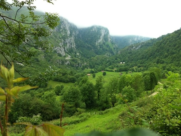 El Valle de Angón verde y con niebla