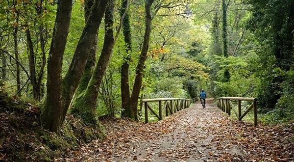 la ruta del oso asturias en bici