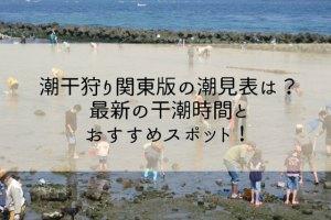 潮干狩り関東版の潮見表は?2019年最新の干潮時間と おすすめスポット!