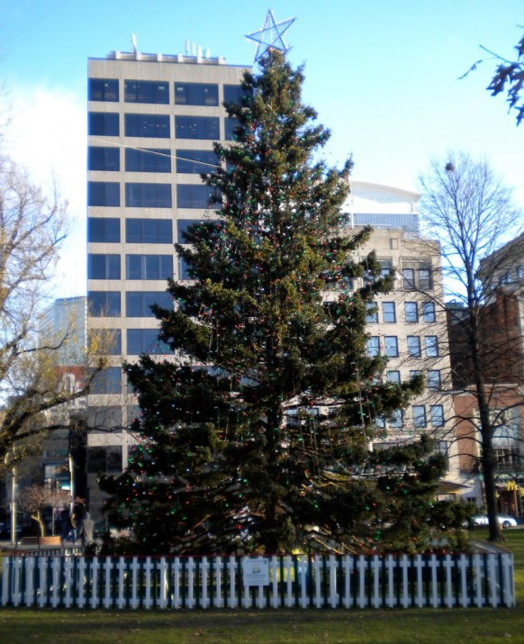 Boston Commons Christmas Tree
