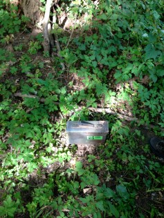 Ammo can size Geocache