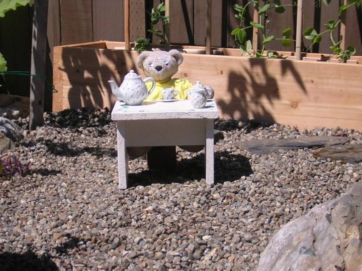 Teddy with tea in the garden