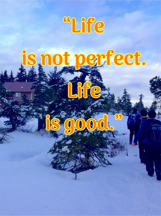 """Life is not Perfect. Life is Good."""