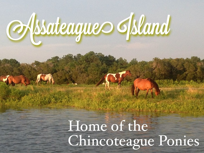 The Lighthouse Mystery of Assateague Island