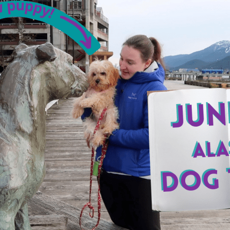 DIY Virtual Elizabeth Peratrovich Juneau Walking Tour