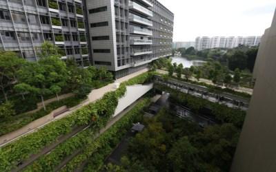 新加坡邱德拔醫院服務設計參訪(Khoo Teck Puat Hospital)