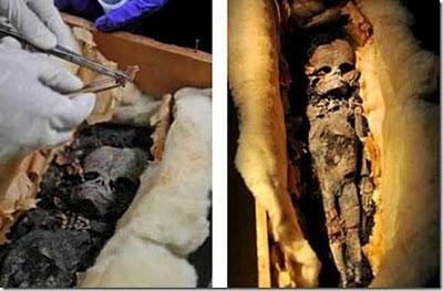 momia extraterrestre