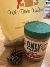Supplies for making bird feeders for activities to do at home with kids
