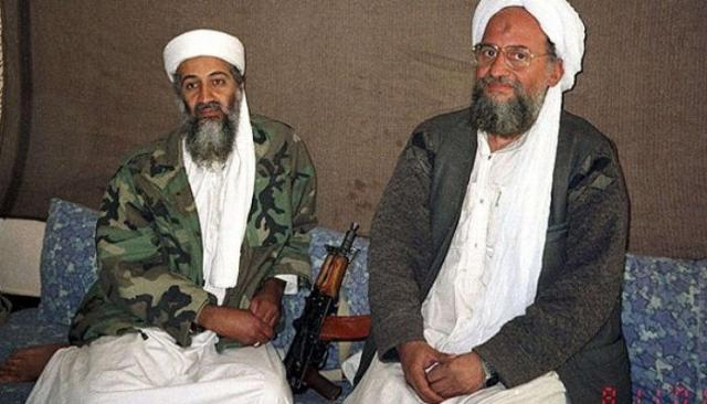 الظواهري وبن لادن
