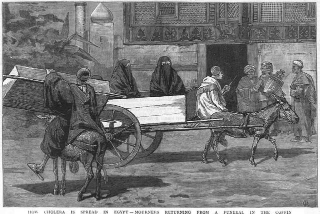 الكوليرا في مصر في القرن 19