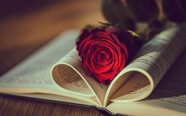 الحب والقراءة