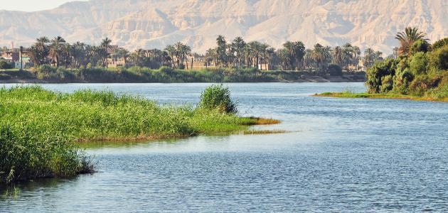 الأراضي الزراعية حول النيل