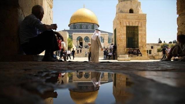 فلسطين الشيخ جراح
