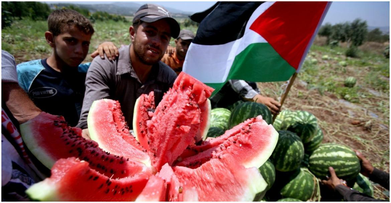 البطيخ فلسطين