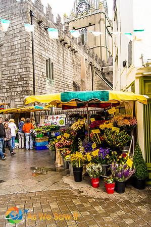 Pedestrian flower market in Galway