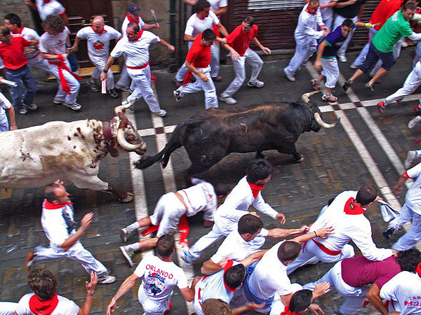 What To Expect While Running with the Bulls