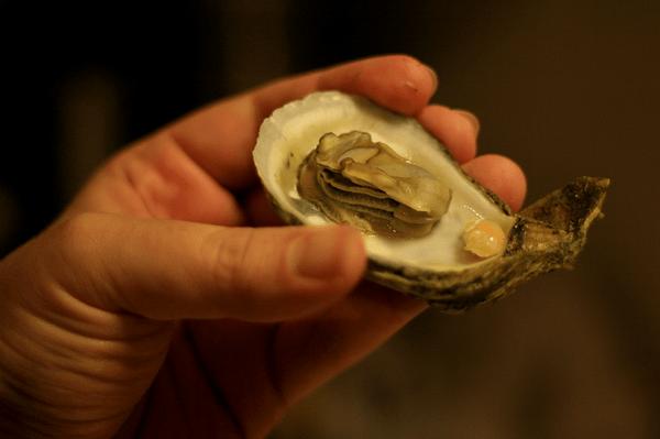 Rock Oyster Festival, Cornwall