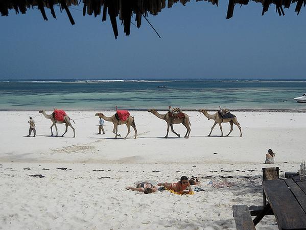 Mombasa Coast beaches