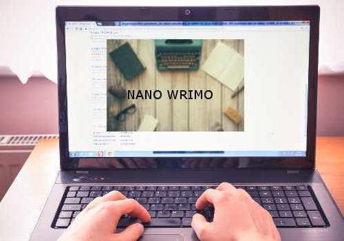NANO WRIMO