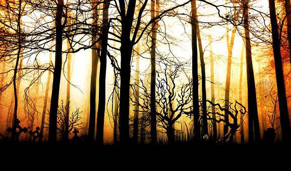 short story skinwalker forest For the Night is Dark
