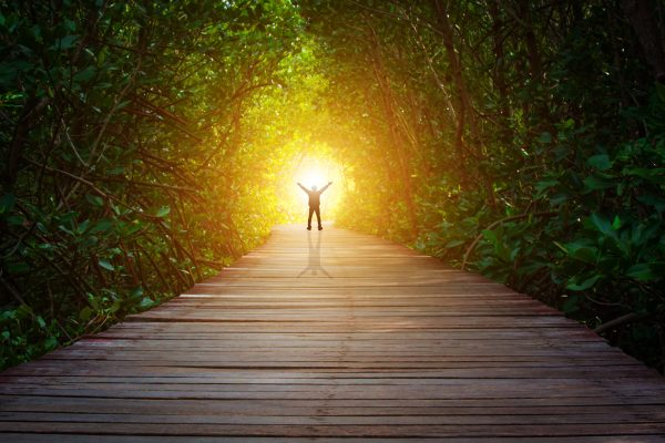 Illuminate the path ahead with research and insights - Asymmetric