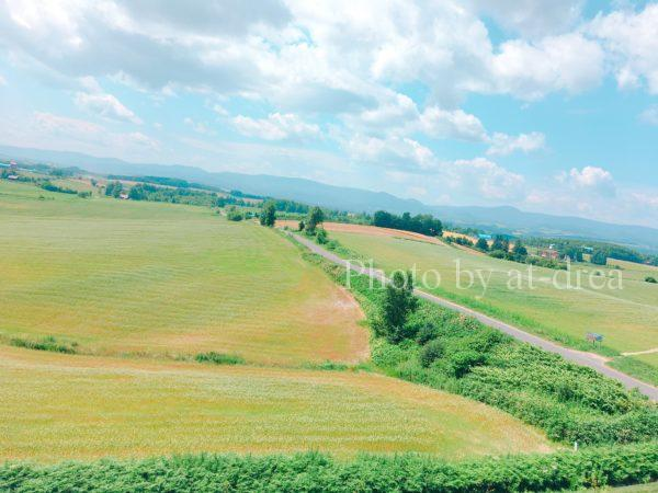 滋賀から北海道家族旅行上富良野パッチワークの丘