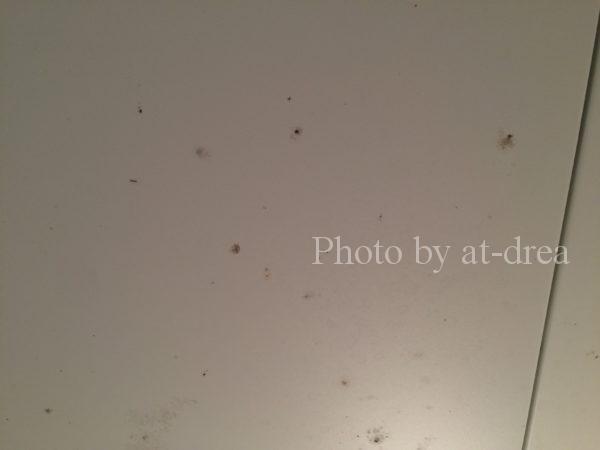 お風呂掃除 天井カビ