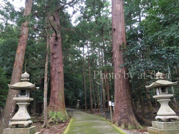 若狭彦神社 第二の鳥居
