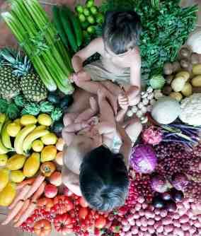 fruitboys.jpg