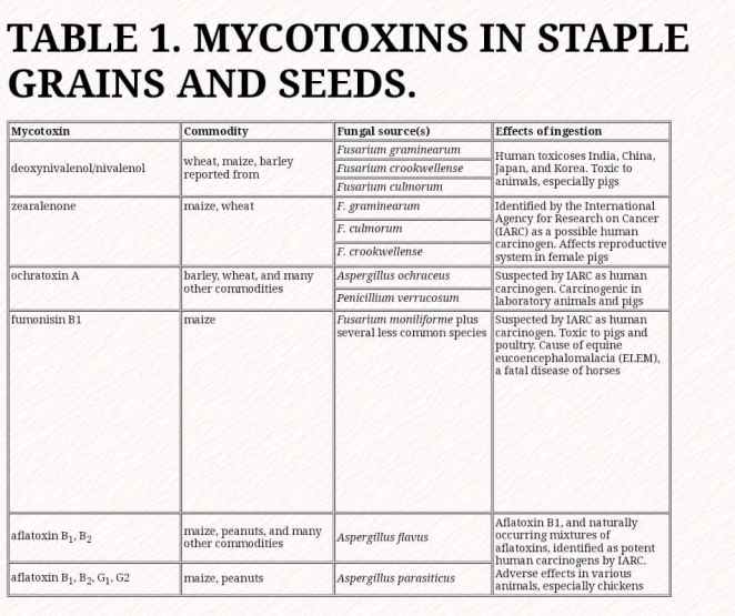mytotoxins in grains and seeds