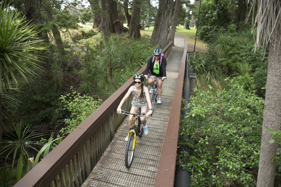 Henderson Creek shared path