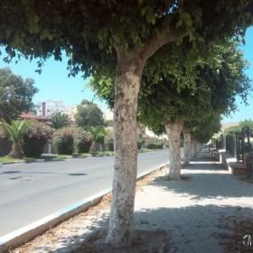 - Rue de Safi -