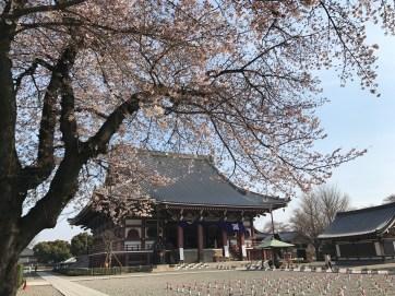 Ikegami Honmon-ji Grand Hall
