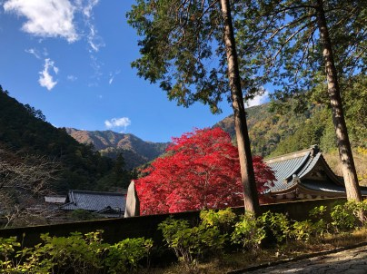 Near the Sanmon gate of Minobusan Kuonji Temple