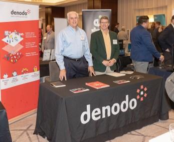 denodo-0036