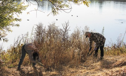 Volunteers Work to Beautify Atascadero Lake