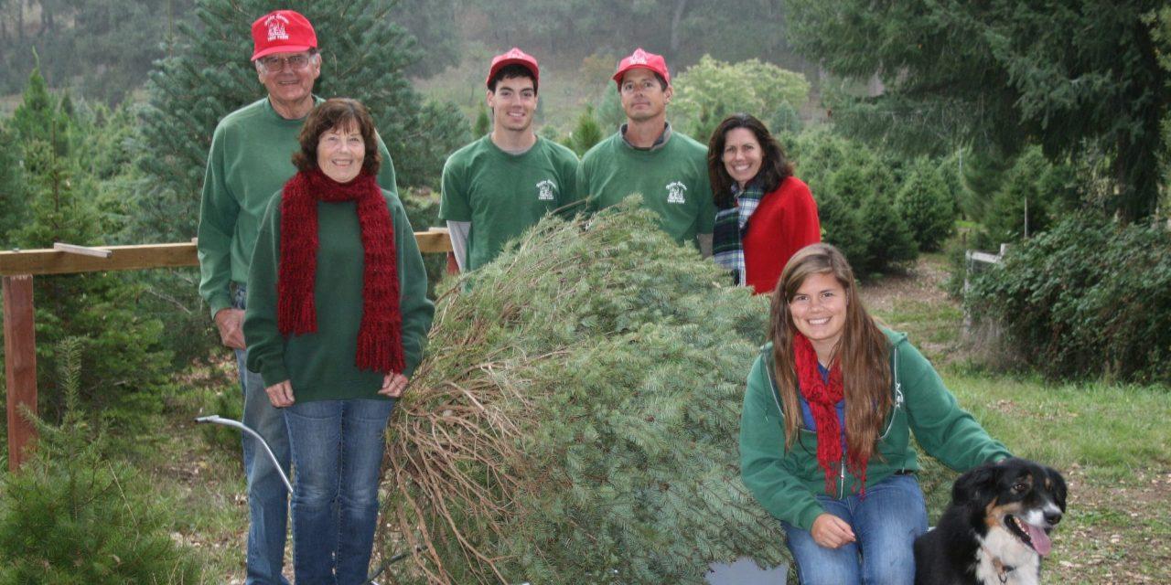 Hidden Springs Tree Farm Ready for Season