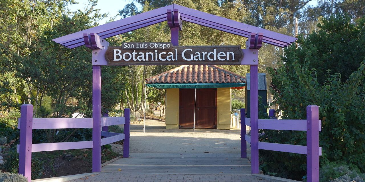SLO Botanical Garden: Capturing California's Flowers: Natural History in the Digital Age