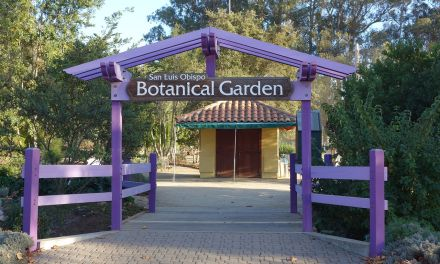 San Luis Obispo Botanical Garden: The Garden is Changing Entrance