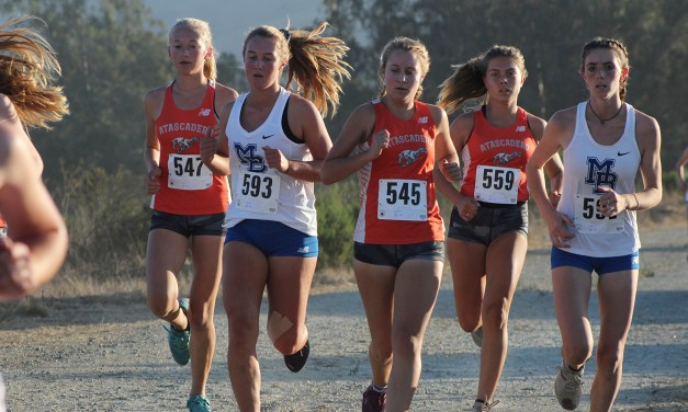 Bearcats and Hounds Cross Country Gearing up for CIF