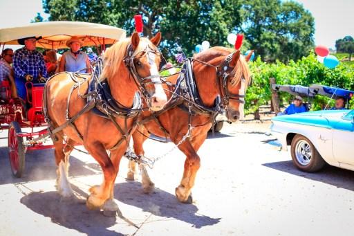 Horse Drawn Carriage Sculpterra
