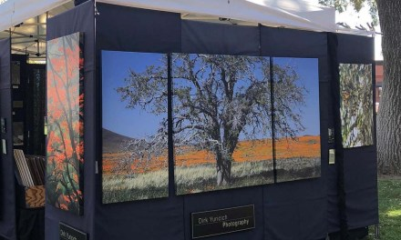 Art in the Park Returned to Paso Robles For a Successful Weekend