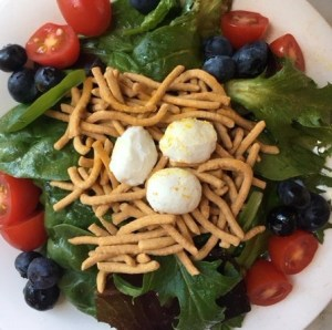 Close up birds nest salad