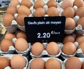 market-eggs.jpg
