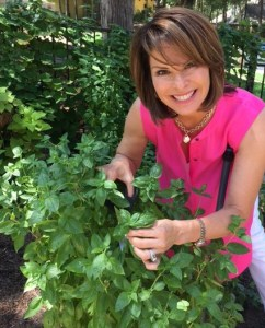 Lorie clipping basil
