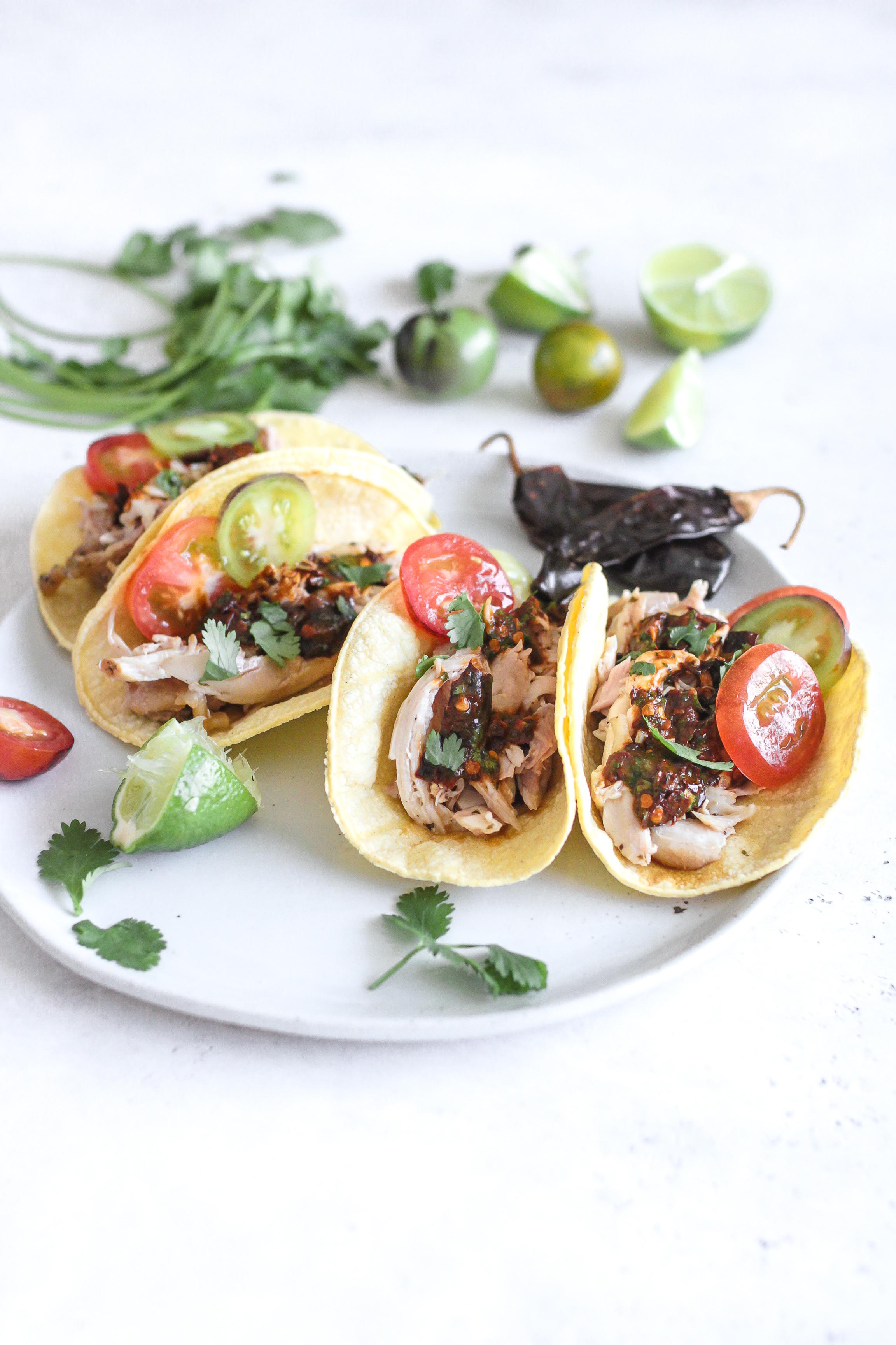 Pulled Chicken Guajillo Pepper Sauce Tacos